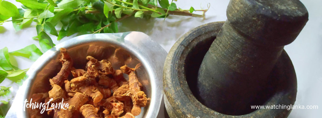 Best Ayurveda Treatments in Sri Lanka.