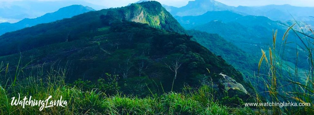 Hulangala Mini World's End at Selagama